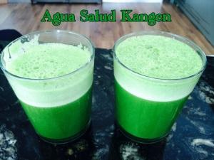 Jugos verdes Agua Salud Kangen